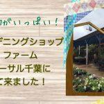 千葉市稲毛区の人気ガーデニングショップ、ザ・ファーム・ユニバーサル千葉へ行ってきました